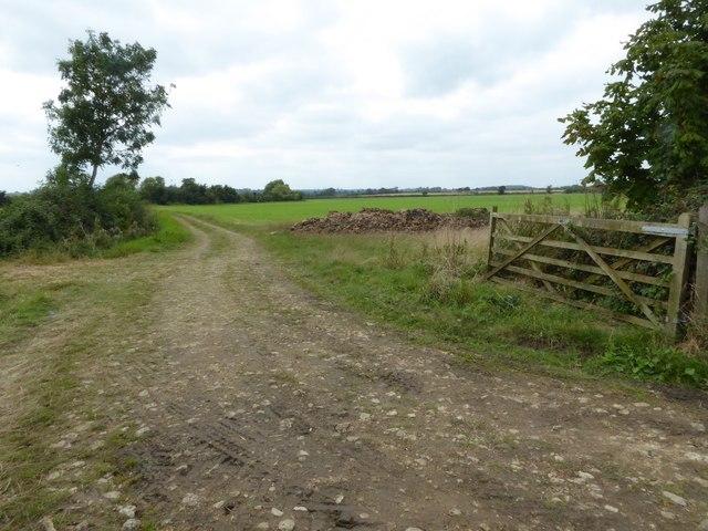 Field entrance near Worsall Farm