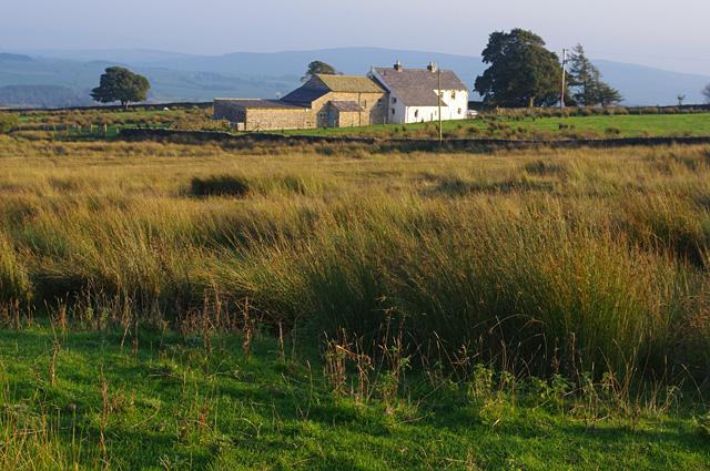 Farm, Merrybent Hill