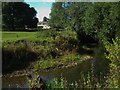 ST3605 : River Axe with a glimpse of Forde Abbey by Becky Williamson