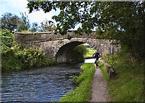 SD7328 : A cyclist approaches Bridge 110 on the Leeds and Liverpool Canal by Ian Greig