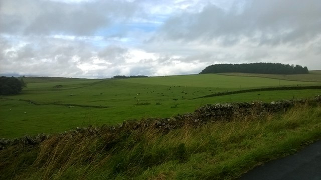 Countryside between Stanegate and Hadrian's Wall