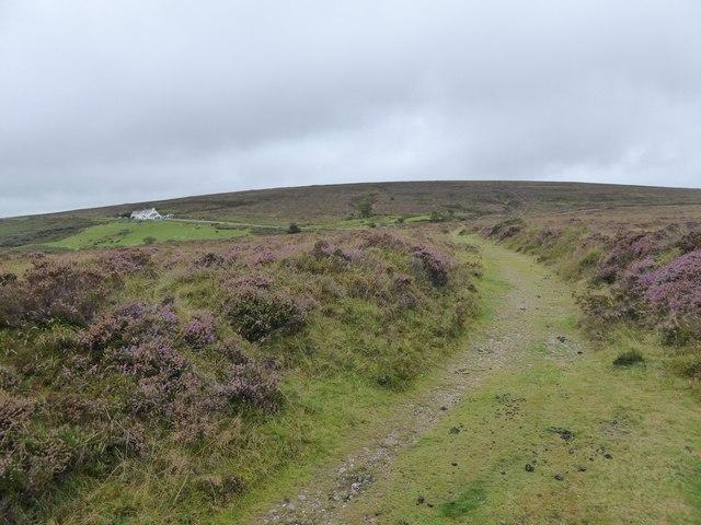 Track on Dartmoor near Warren House Inn