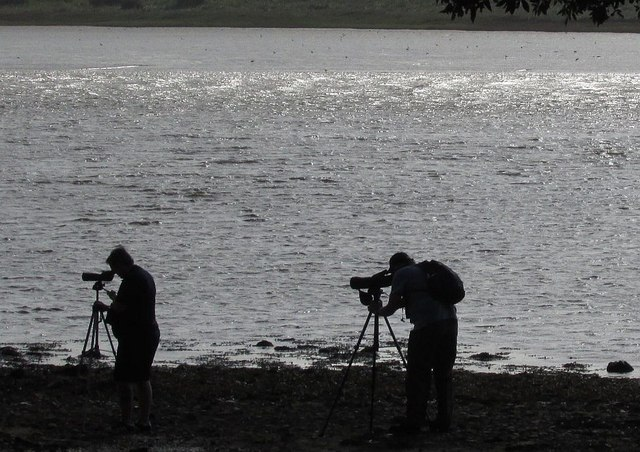 Birdwatchers at Riversmeet
