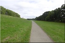 SE5853 : Clifton Ings: path and flood defence by Richard Webb