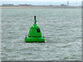SZ6693 : Horse Elbow buoy by Robin Webster