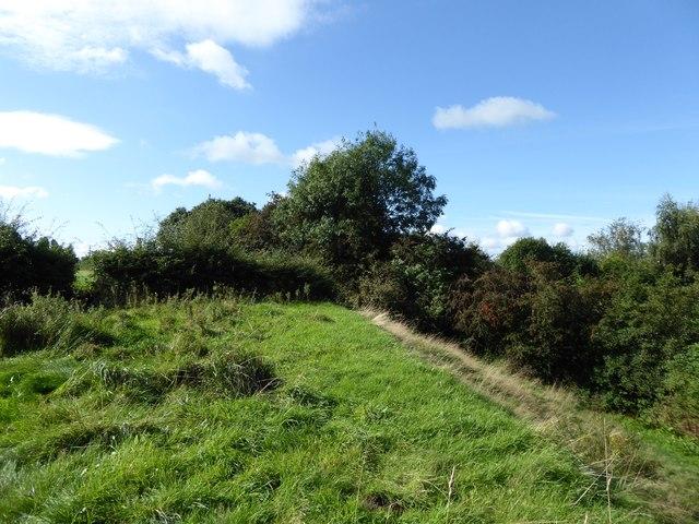 Audley: field corner off Alsager Road