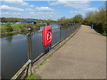 SK7954 : Path along the River Trent in Newark-on-Trent by Mat Fascione