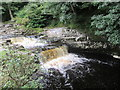SD8167 : River  Ribble  at  Stainforth  Force by Martin Dawes