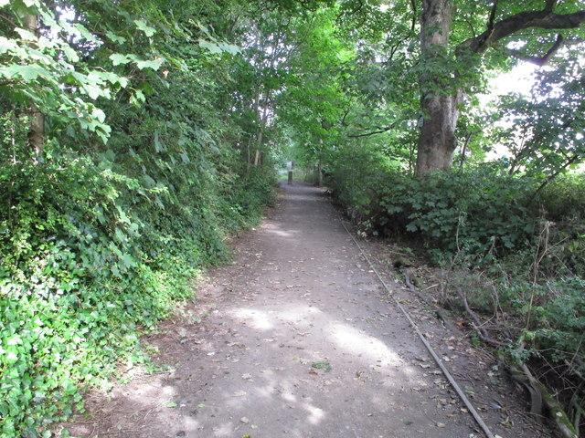 Clay Lane, Durham