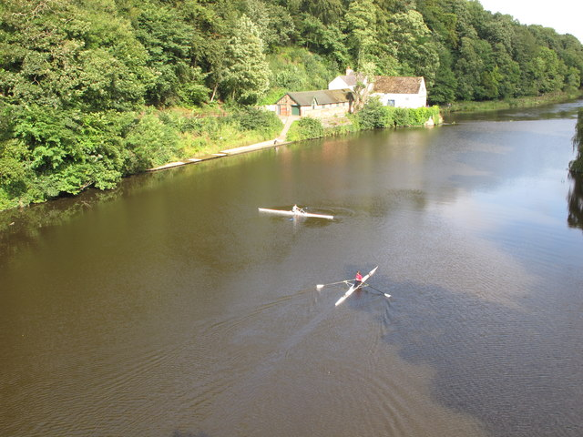 Scullers on River Wear at Durham