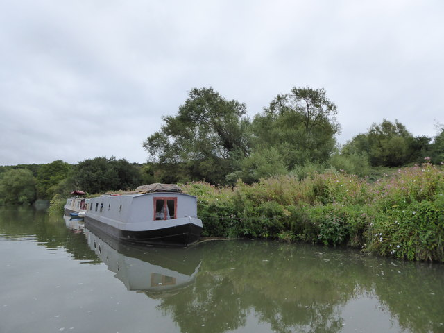 Narrowboats moored near the edge of Wytham Great Wood