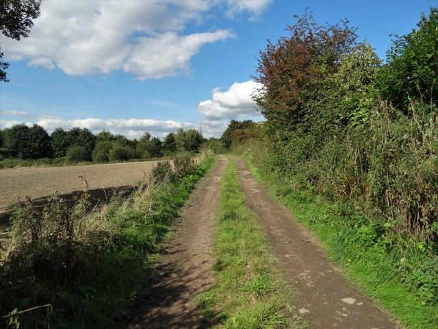 Farm track west of Windmill Hill