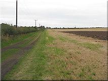 NT5682 : John Muir Way at Balgone by M J Richardson