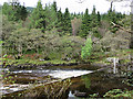 NN2431 : Weir on the River Orchy by Anne Burgess