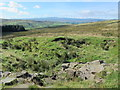 NY7448 : The collapsed pot of the old lime kiln above Blagillhead by Mike Quinn