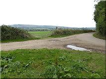 TQ1913 : Junction of tracks near Upper Wyckham Farm by Shazz