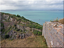 SX9456 : Berry Head quarry by Richard Dorrell