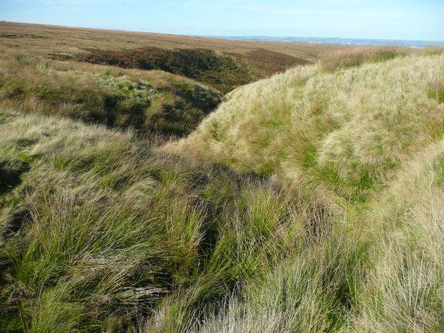 Minor clough on Deanhead Moor, Scammonden