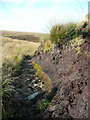 SE0214 : Erosion of peat on Deanhead Moor, Scammonden by Humphrey Bolton
