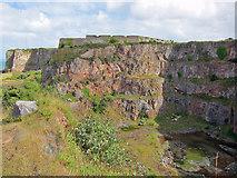 SX9456 : Berry Head quarry by Richard Dorrell