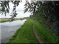 SK4228 : The Trent & Mersey Canal near Aston-on-Trent by Graham Hogg
