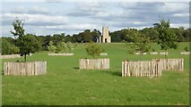 SO8844 : Recently planted trees in Croome Park by Philip Halling