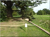 SO8844 : A closed path in Croome Park by Philip Halling