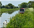 SK7386 : Narrowboat moored along the Chesterfield Canal by Mat Fascione