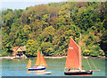 SX8756 : Sailing on the Dart by Des Blenkinsopp