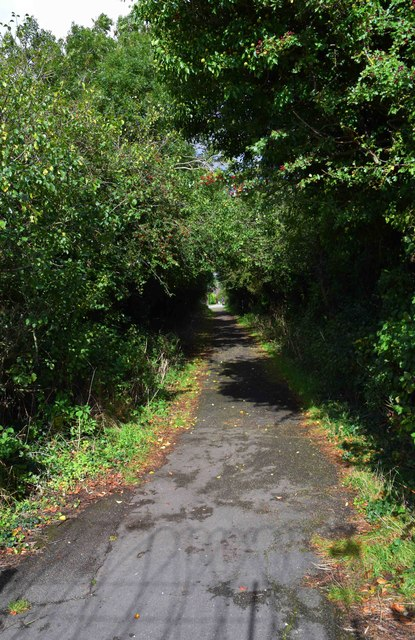 Footpath to The Crescent, Carterton, Oxon