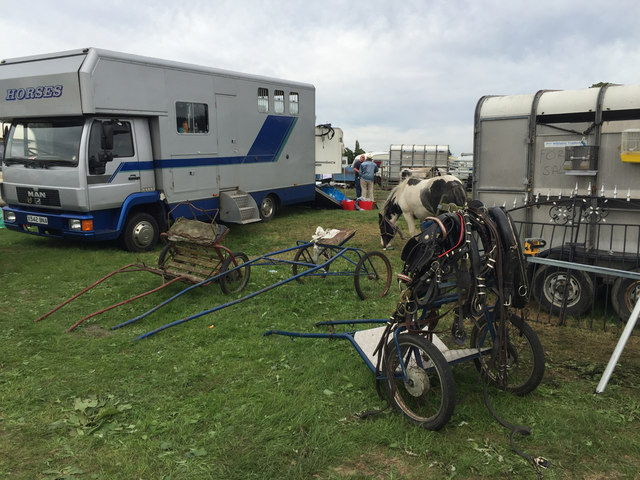 Tack and old gigs on display, Kenilworth Horse Fair