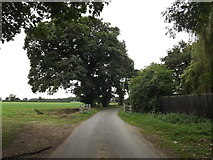 TM1587 : Rectory Road, Gissing by Adrian Cable