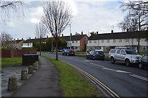 TL4661 : Campkin Rd by N Chadwick