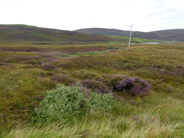 Moorland beside the A838