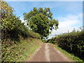 ST0008 : Track to Beacon Lane by Roger Cornfoot