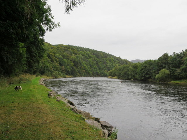 The mighty Spey trundles seawards