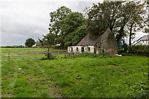 R8784 : Derelict cottage, Loughourna by David P Howard