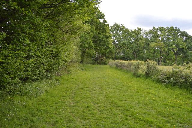 Wide green footpath