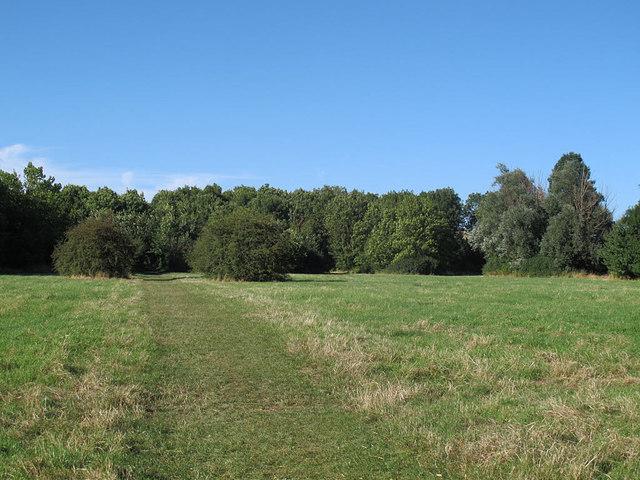 Lea Valley arboretum - meridian avenue