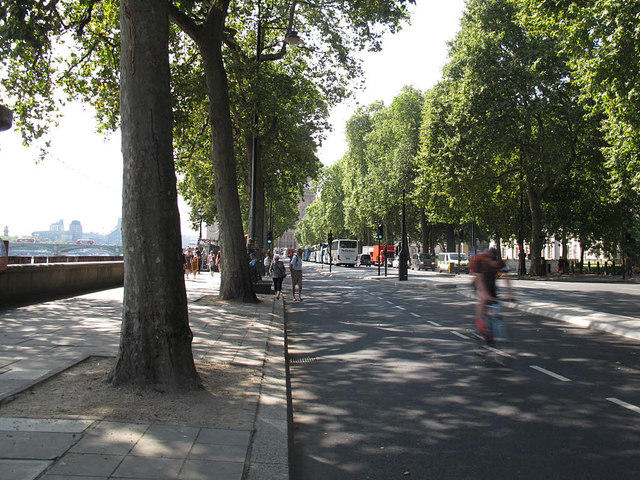 Cycle superhighway, Victoria Embankment looking south