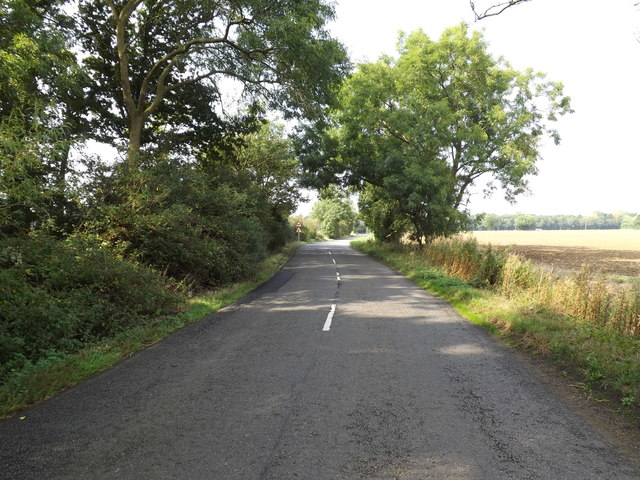 B1134 Long Row, Sneath Common
