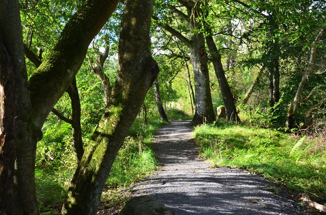 Path to the Visitor Centre, Loch of the Lowes