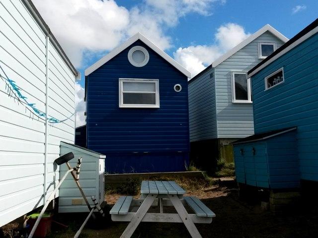 Hengistbury Head: a variety of blues