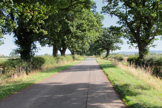 Woolsthorpe Lane