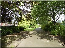 SJ8748 : Cobridge Park by Jonathan Hutchins