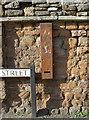 ST6163 : Old gum by Neil Owen