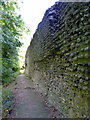TQ1810 : Outer Wall, Bramber Castle by PAUL FARMER