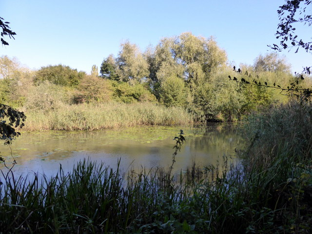Lake at Woods Mill Nature Reserve