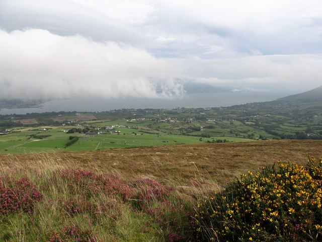 The coastal plain between the Cooley Mountains and Carlingford Lough
