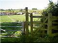 ST6560 : From Tilley Lane by Neil Owen